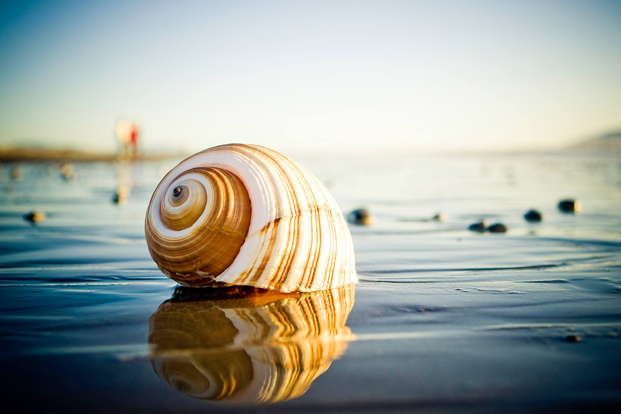 NEW ZEALAND STOCK IMAGERY / Otaki Beach